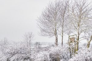 Jaktstøvler – finn det beste paret til vinteren